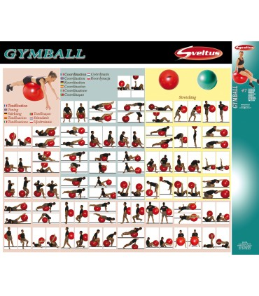 Poster d'exercices gymball