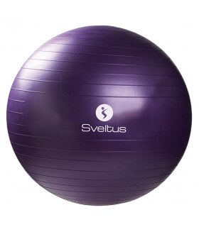 Gymball 75cm parme