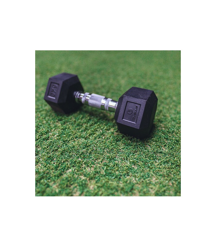 Hexagonal dumbbell 10 kg x1